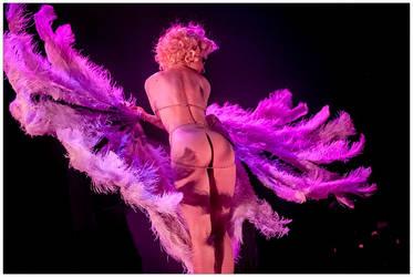 Burlesque Follies DeLuxe 7 by Uchoose