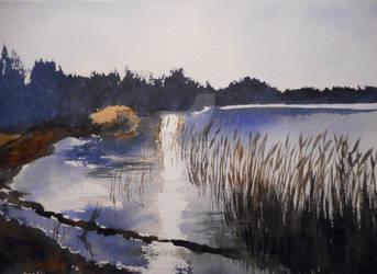 Where Tall Reeds Rustle by Virtuella