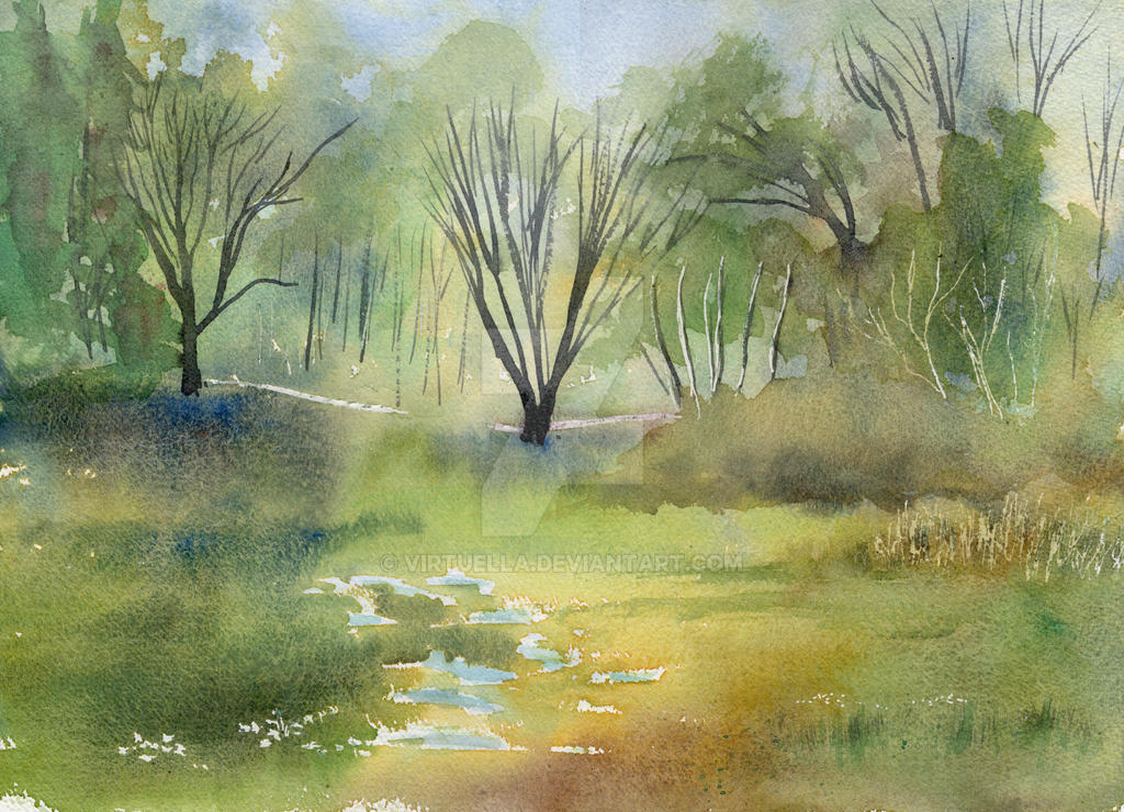 Meadow in Spring by Virtuella