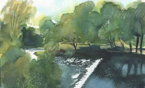 By the Weir by Virtuella