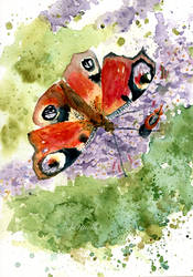 Bug Buddies by Virtuella