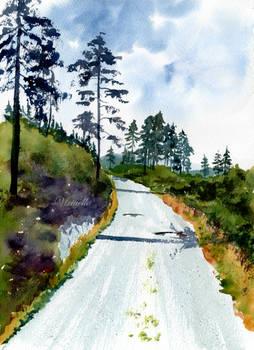 A Scottish Walk