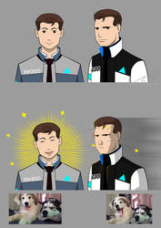 RK800 x RK900 by ChikKV