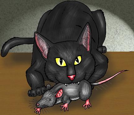 clean cat ears hydrogen peroxide