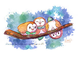 Pokemon - Rowlet trio by proteidaes
