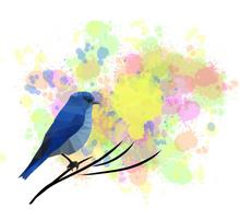 PolyBird