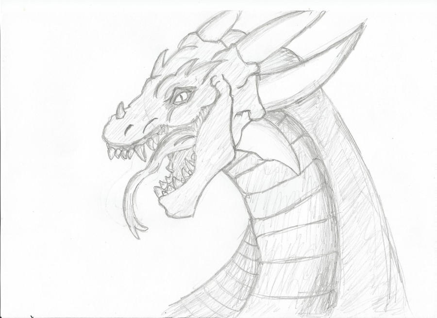 D Line Drawings Locations : Dragon drawing by gingerbread on deviantart
