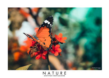 Nature by MURTUZA1997
