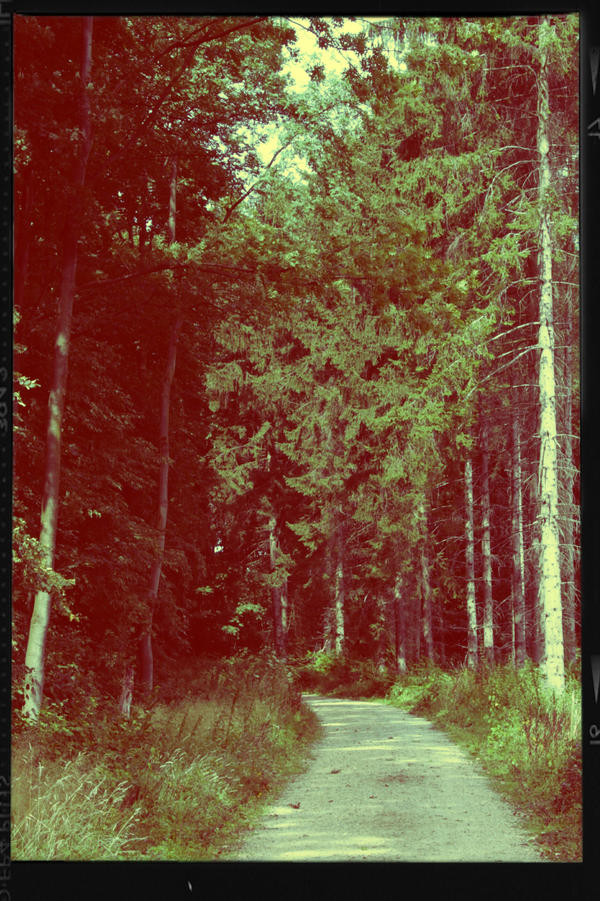 retro path by LeaHenning