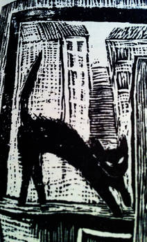 City Kitty