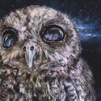 Kosmos eyes by Lusidus
