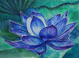 Blue lotus by Lusidus