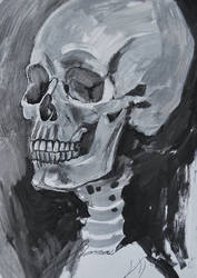 Untitledscull by Lusidus
