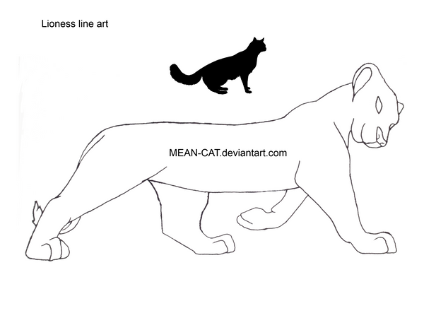 Line Art Meaning : Lioness line art by mean cat on deviantart