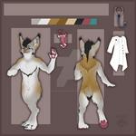 Commission : Custom Lynx