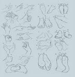 Studies: Hands and Feet