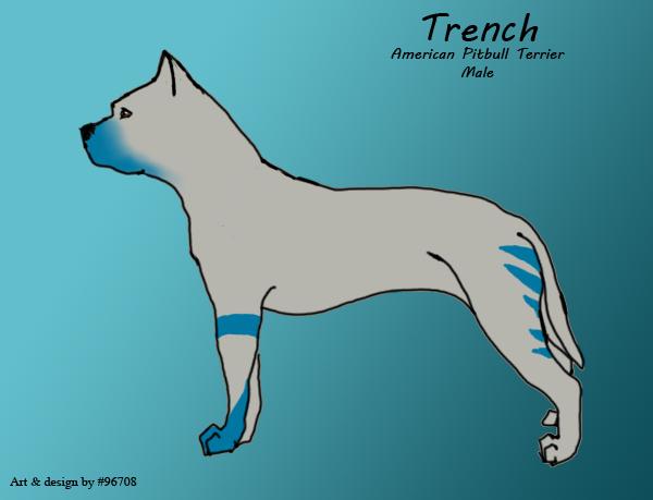 Trench by XxReixX
