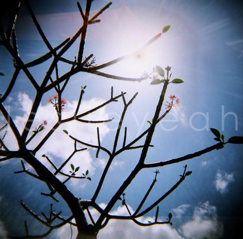 brighter by leslieyeah