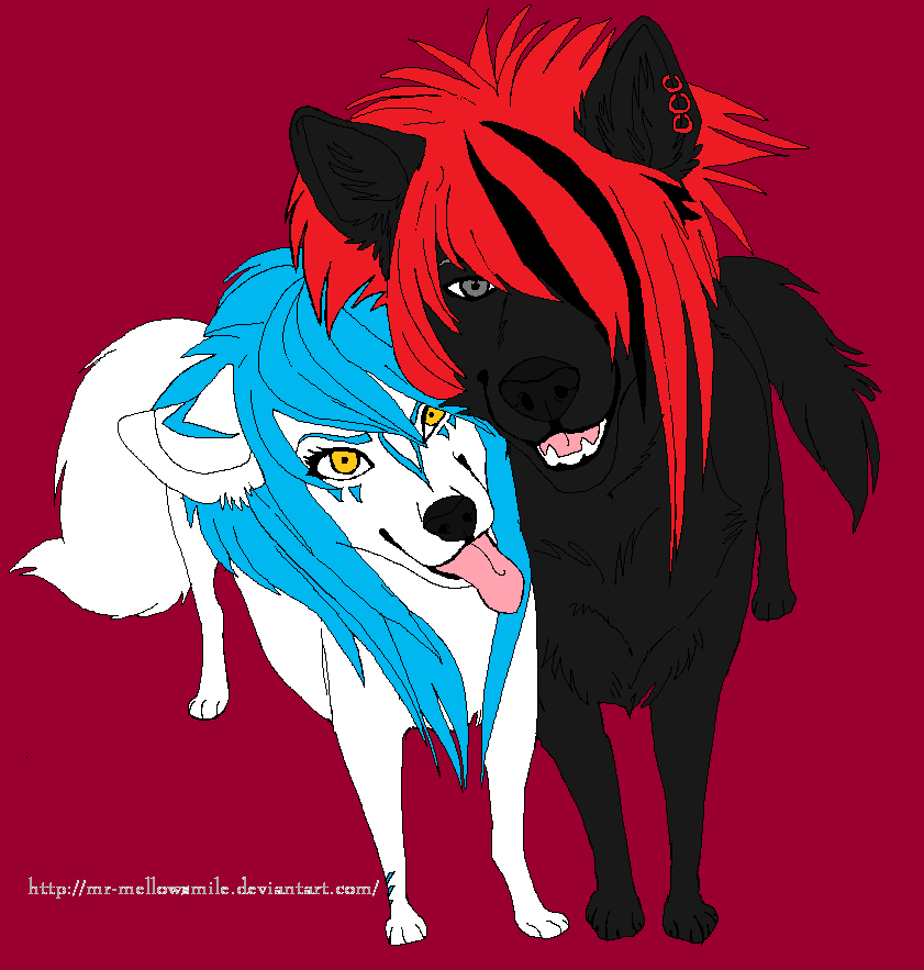 Aleu and Negu: Scene Dogs by lucidcoyote