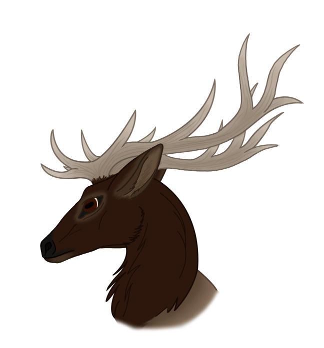 scary elk Gallery
