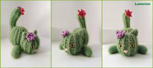 Cactus kitty