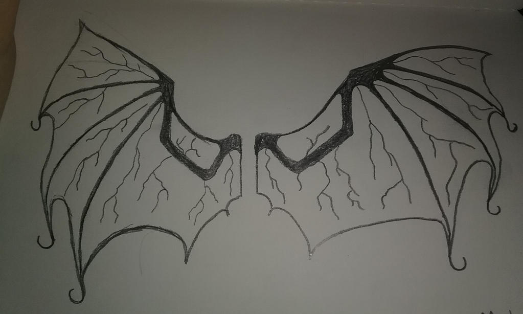 Wing concept by FANDOM----TRASH