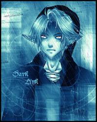 Dark Link by AikaXx