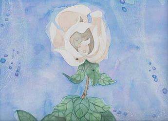 Alice in wonderland, singing rose by 237743936