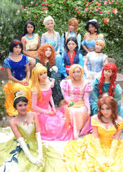 Disney Princesses: The Story Begins with You by curionenene