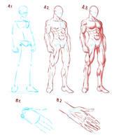 Elijah's Anatomy Guide #1 by ElyasArts