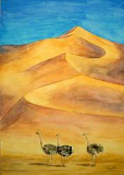 Desert ostriches by meteoro-nayade