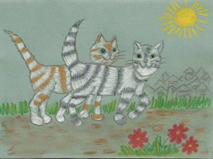 Cats by sivkolin