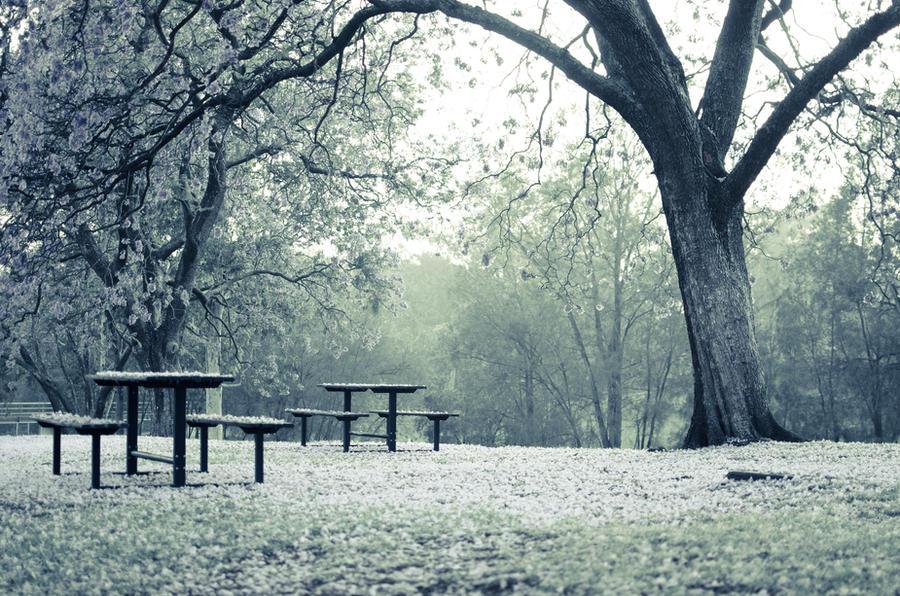 Sunrise picnic by AHague