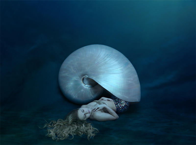Nautilus by ntscha