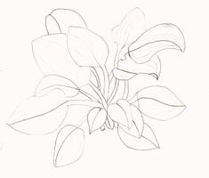 House Plants - lineart by Oinkment