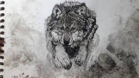 lobo saltando by lavanda53