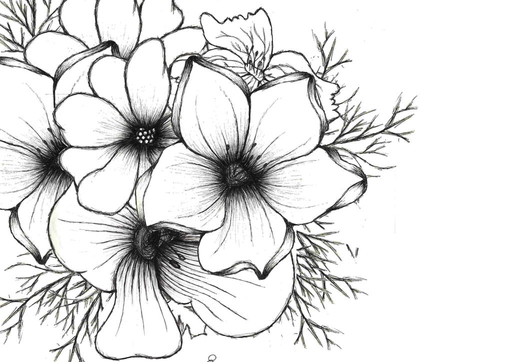 Flower drawing background by amywatkinson on deviantart flower drawing background by amywatkinson thecheapjerseys Choice Image