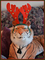 Rudolph The Red Nosed Rein...Tiger?!