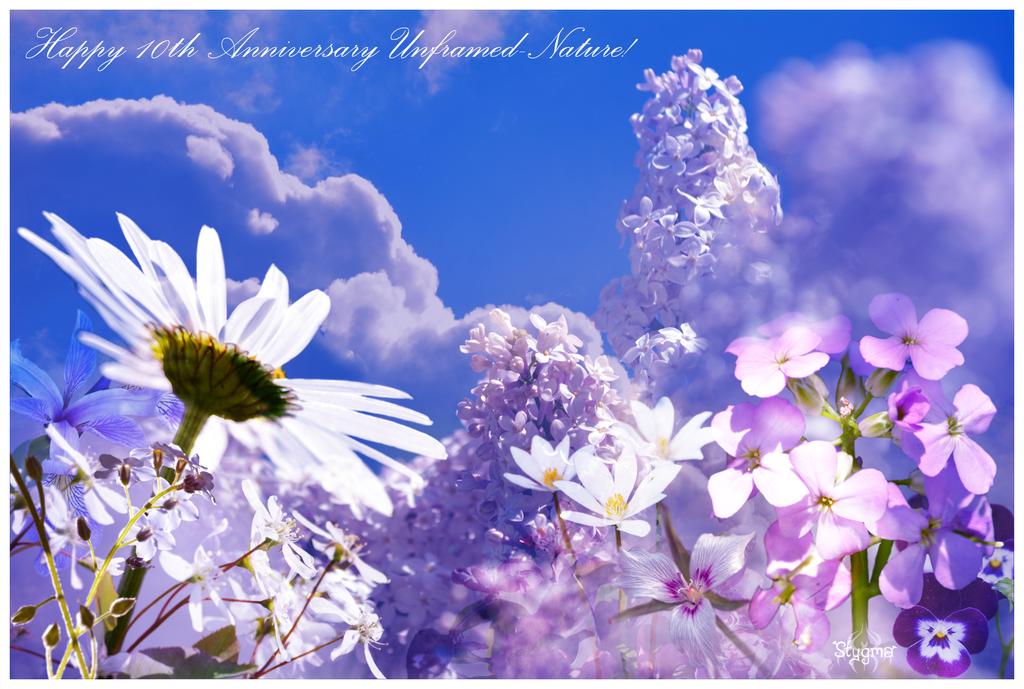 A Garden in Heaven by Stygma