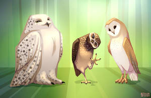 Owls by Reystleen
