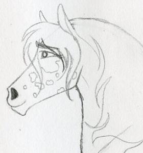 MiyakoUma's Profile Picture