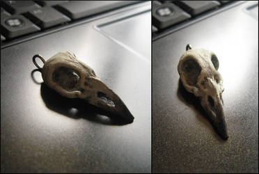tiny bird skull pendant by tiivik