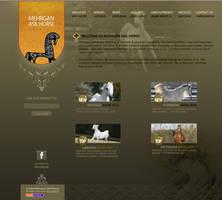 Mehrgan Asil Horses by farshad