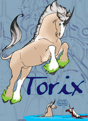 EE May 2011 - Torix by Dwelian