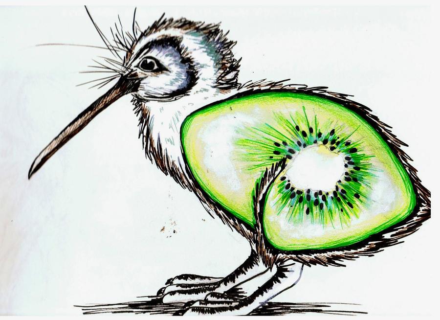 The kiwi fruit bird by keidapirate on DeviantArt