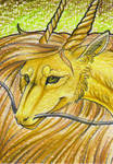 .: Golden one -ACEO :.