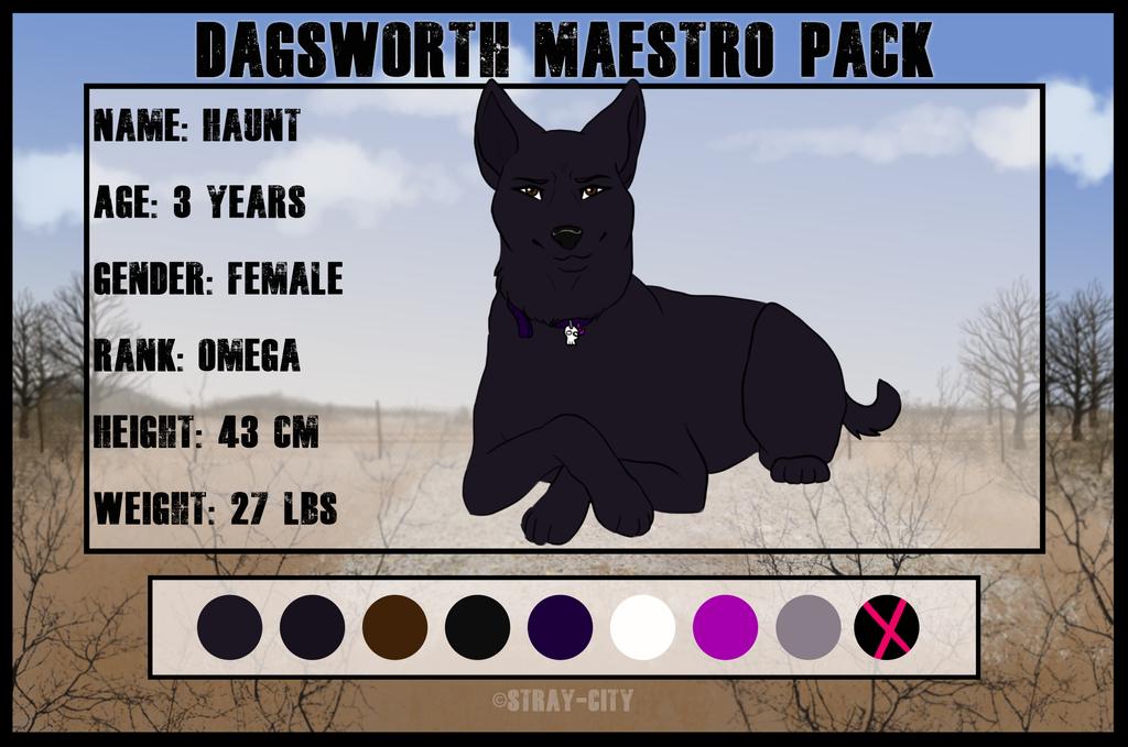 Haunt - Dagsworth Maestro - Omega by nightxfel