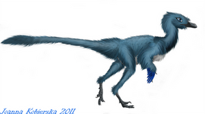 Troodon female