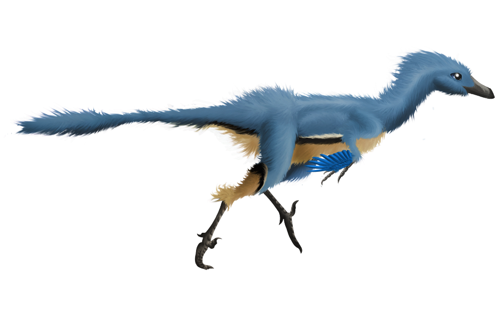 Troodon (tries to be realistic)