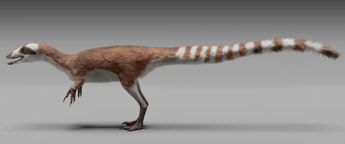 Sinosauropteryx prima - whole body